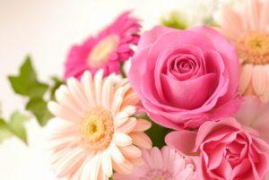 ピンク系の花